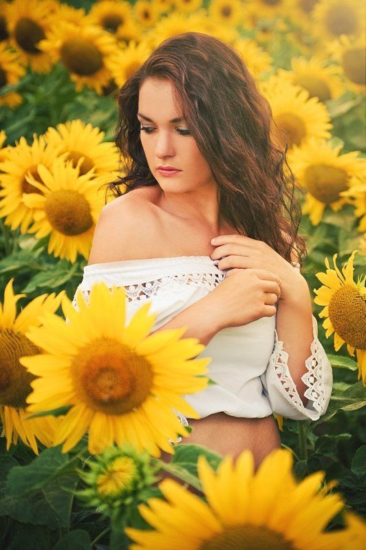 sunflowers, vol, 1 photo preview