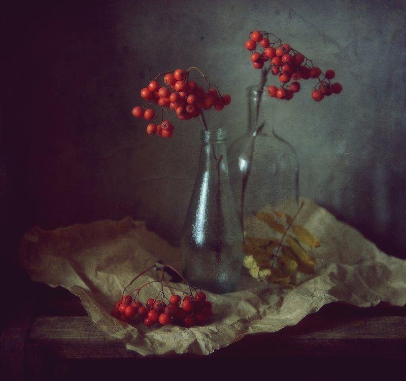 натюрморт,still life,осень,рябина рябиновая осень...photo preview