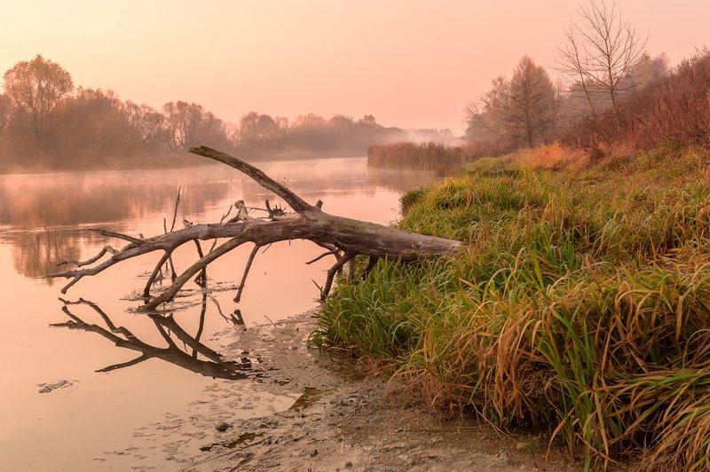 пейзаж,природа,осень,красота,россия,рассвет,октябрь \