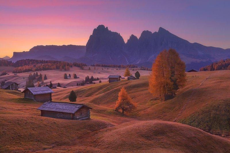 Sunrise in Alpe di Siusiphoto preview