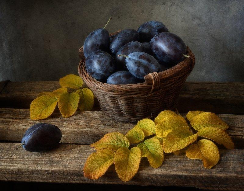 натюрморт,still life,осень,сливы сливовый...photo preview