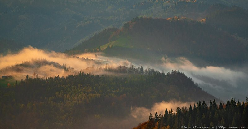 alpine, autumn, beautiful, carpathian, cloud, countryside, dawn, environment, fall, fog, foggy, foliage, forest, green, hiking, hill, landscape, light, meadow, mist, misty, moody, morning, mountain, mountain trees, mysterious, nature, outdoor, park, peak, Misty Mountains Fog over forests and hills in Carpathian Mountains, Ukrainephoto preview