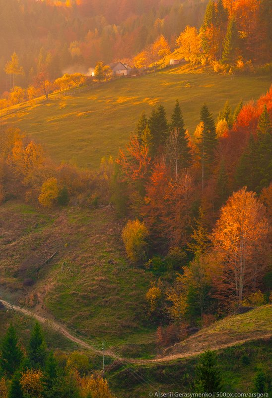 alpine, autumn, background, beautiful, carpathian mountains, carpathians, cloud, color, colorful, conifer, countryside, deciduous, diagonal, fall, field, foliage, forest, haystack, hill, house, land, landscape, meadow, morning, mountain, mountains, natura Autumn foliage trees in the mountains. Meadow with haystack and forest in the Carpathian mountainsphoto preview