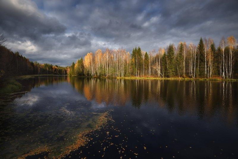 осень,река,лес,небо,облака,листья,отражение оенние контрастыphoto preview