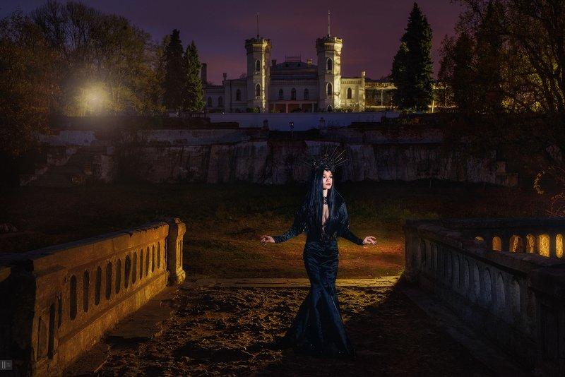 портрет,девушка,корона,платье,груди,замок,колонны,крыша,галерея,мостик,свет,фонарь,дерево,куст,мостик,туя,елка В колыбели Коха #2photo preview