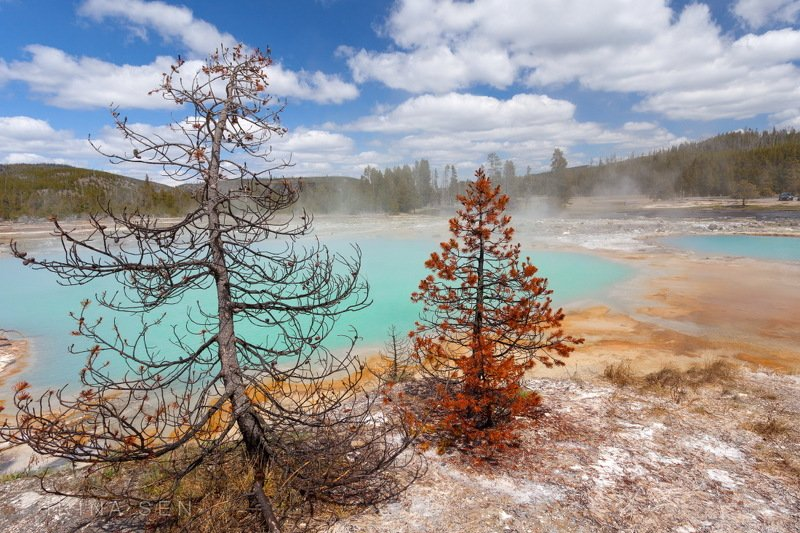 Yellowstone National Park, USAphoto preview