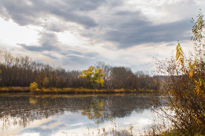 осень, октябрь *photo preview