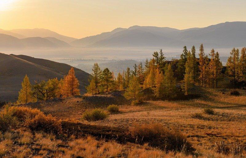 алтай, курайская степь, раннее утро. рассвет.осень. Первые лучи в Курайской степи.photo preview