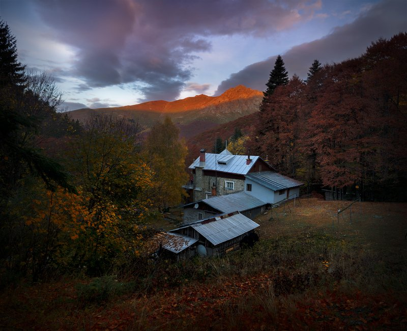 landscape nature scenery forest wood  sunrise dawn morning autumn mountain hut peak staraplanina bulgaria туман лес вершина верх хижина Morning in the forest / Утро в лесуphoto preview