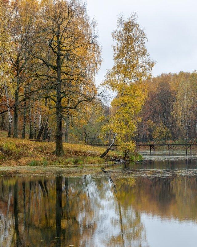 природа, пейзаж. осень, отражение, золото, настроение, золотая осень Состояние покояphoto preview