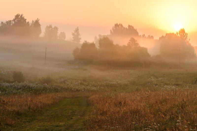 природа,утро,рассвет,лето \