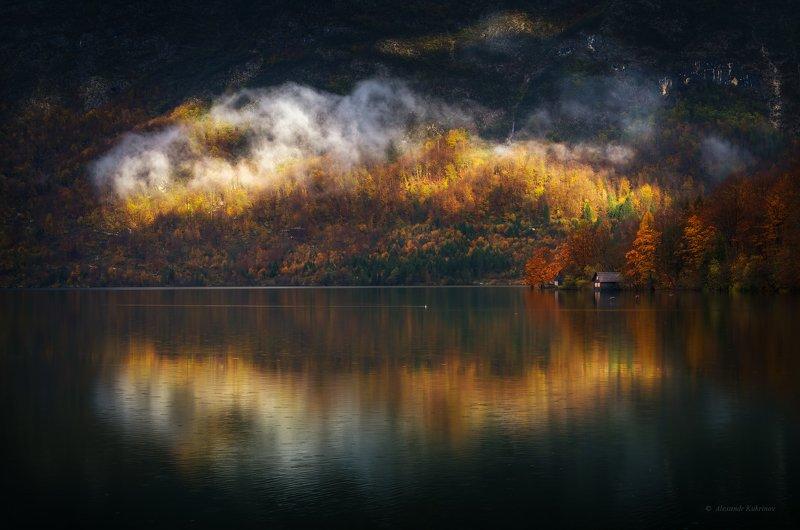 словения, осень, туман, пейзаж, утро, бохинь Бохиньский гамбургер...photo preview