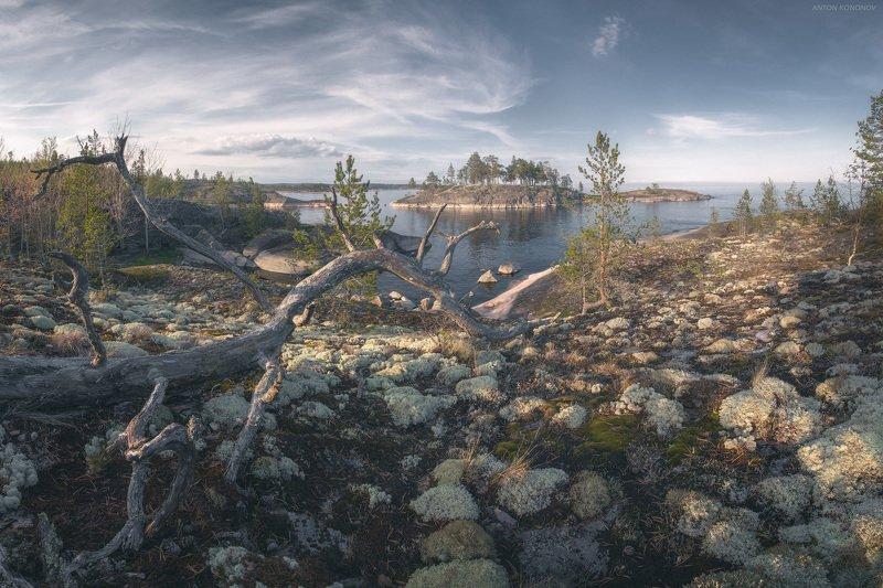 ладога, ладожское, озеро * * *photo preview