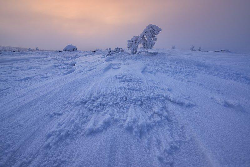 Морозно...photo preview
