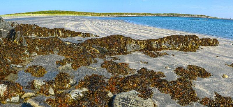 рыбачий, баренцево море, отлив Отливphoto preview