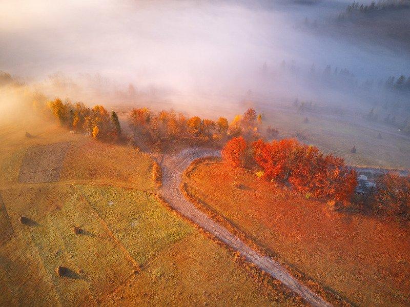 горы, карпаты, октябрь, осень, рассвет, туман, украина, утро Рассвет в Студеномphoto preview