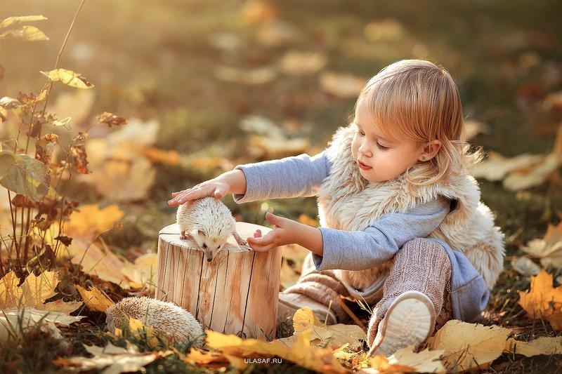 портрет, art, portrait, осень, sunset, закат, autumn, дети, девочка, girl, волшебство, magik, happy, nikon, 105mm, kid, children, beautiful, ежик, hedgehog ***photo preview