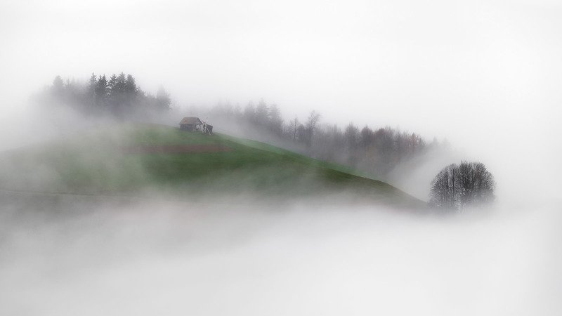 туман, холм, домик, деревья, словения, slovenia, foggy, misty, house, green, trees Остров в туманеphoto preview