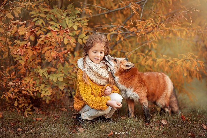 лис, fox, art photo, art, портрет, осень, autumn, ребенок, девочка, girl, животное, радость, малыш, друзья, happy, любовь, love, 105mm, kid, children, beautiful, закат, листопад ***photo preview