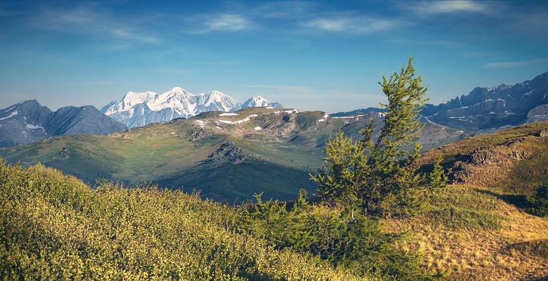 пейзаж, природа, хребет, горы, вершины, белуха, шенелю, катунский, хребет, палатки, ночевка, утро, Алтай, красивая, природа, большой, высокий Ночевка с видом на Белухуphoto preview
