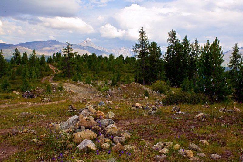 алтай,горный алтай ,на улаганском перевале.. photo preview
