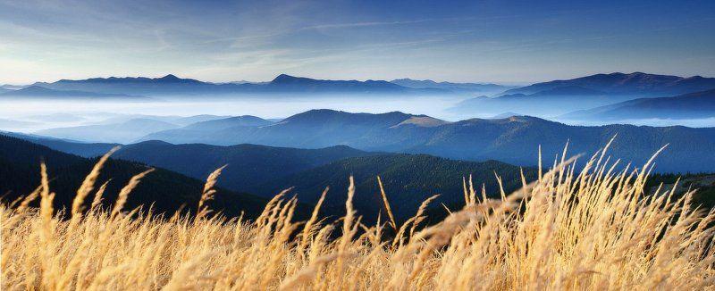 карпаты, горы, рассвет, утро, украина Тихий шелест травphoto preview
