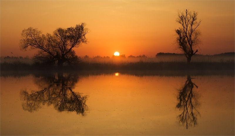 солнце, утро, рассвет, река Оранжевое утроphoto preview