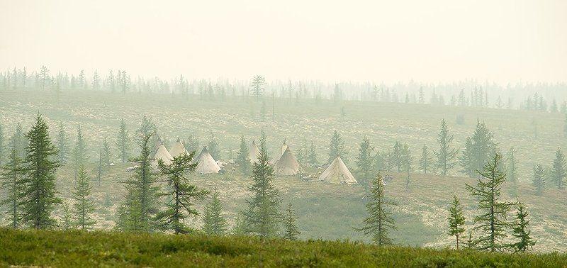север, путешествия, стойбище, жизнь на краю земли, чумы photo preview