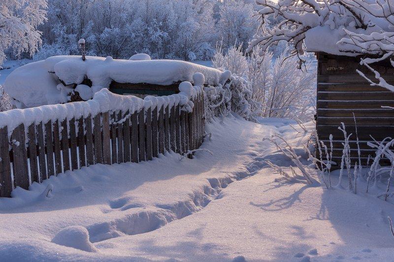 зима, снег, солнце, иней, деревья, тропинка, погребки, район, соломбала, архангельск Соломбальские погребки. Зимняя зарисовка.photo preview