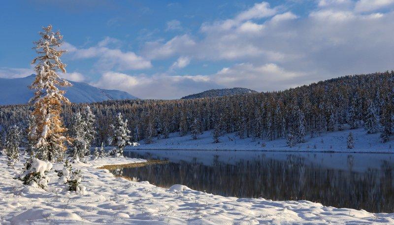алтай, горный алтай, горы, сибирь, киделю, кеделю, улаганский перевал Спускался вечер тихо, незаметно...photo preview