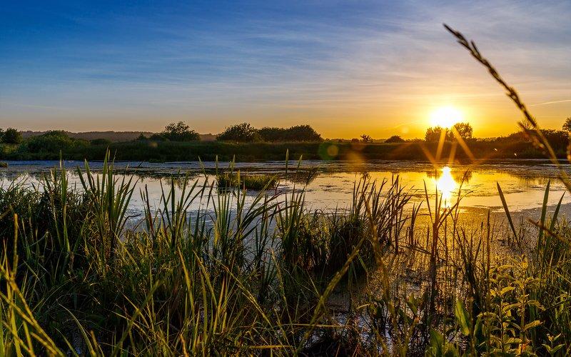 пейзаж, озеро Вечер на болотеphoto preview