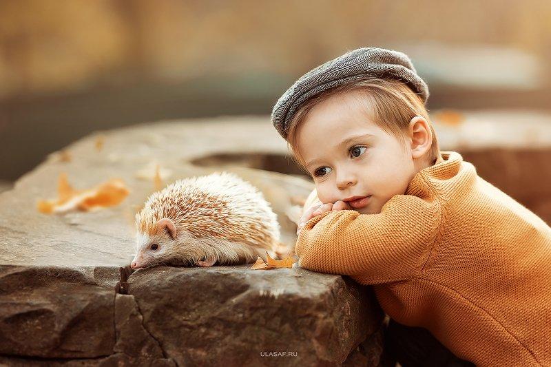 портрет, art, portrait, осень, sunset, закат, autumn, дети, мальчик, малыш, boy, волшебство, magik, happy, nikon, 105mm, kid, children, beautiful, ежик, hedgehog ***photo preview