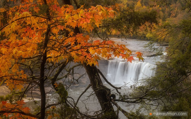 cumberlandfalls, america, american, autumn, daniel_boone, branch, cumberland, foilage, forest, kentucky, landscape, maple, picturesque, river, scenic, trees, united, usa, waterfall, fall, falls, appalachians Cumberland Fallsphoto preview