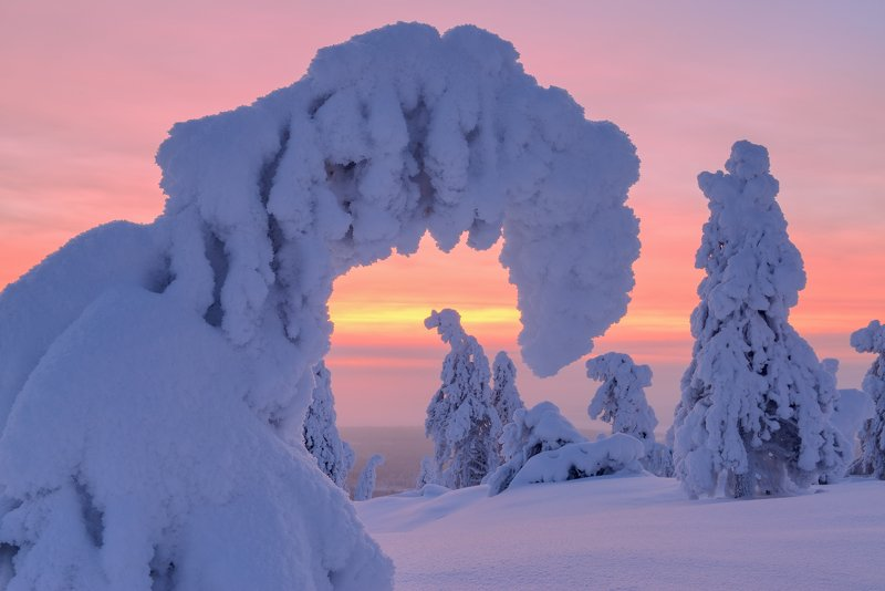 В гостях у зимы...photo preview