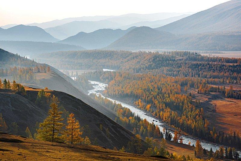 горы. осень алтай. аргут В долине Аргута.photo preview