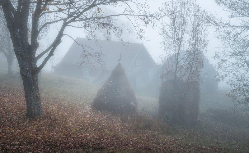 карпаты, осень, пейзаж, утро, рассвет, туман Шёпот осени...photo preview