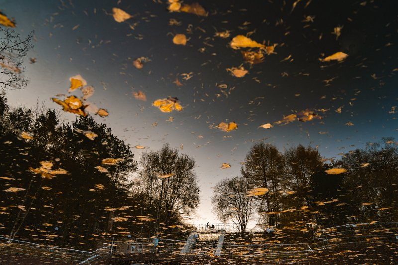 осень, отражение, листья, прогулки, улица, репортаж Тихий часphoto preview