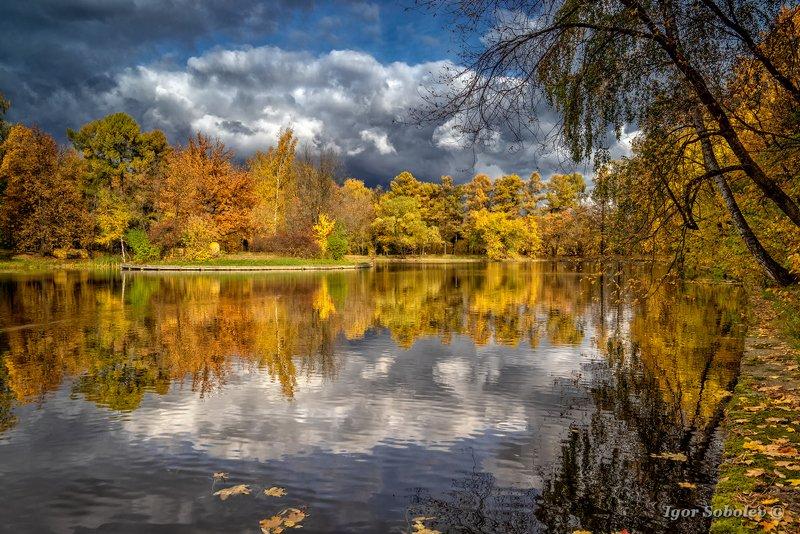 озеро, пейзаж, осень, сокольники, lake, landscape, autumn, sokolniki Облакоphoto preview