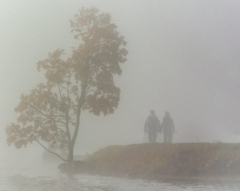 Walk in the fog.photo preview