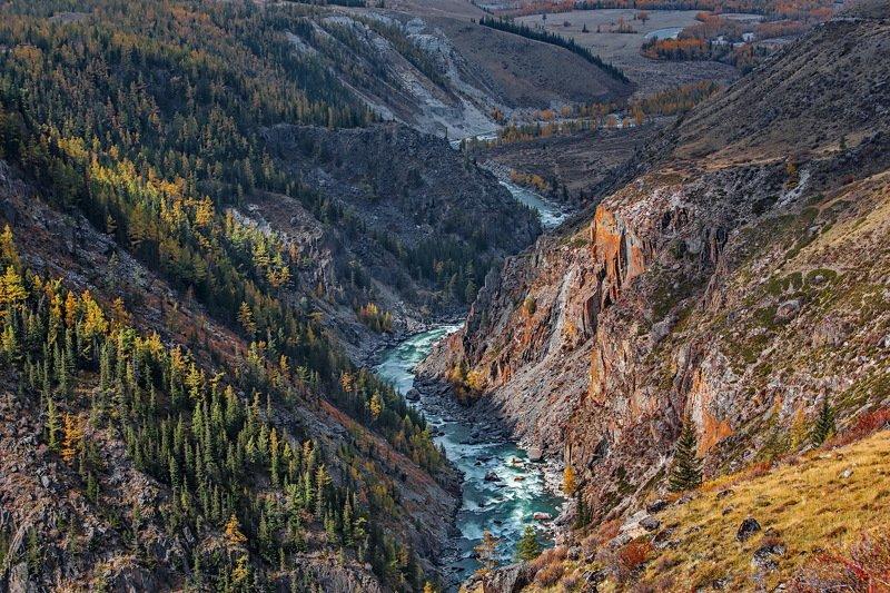 горы. осень. алтай. аргут. На реке Аргут.photo preview