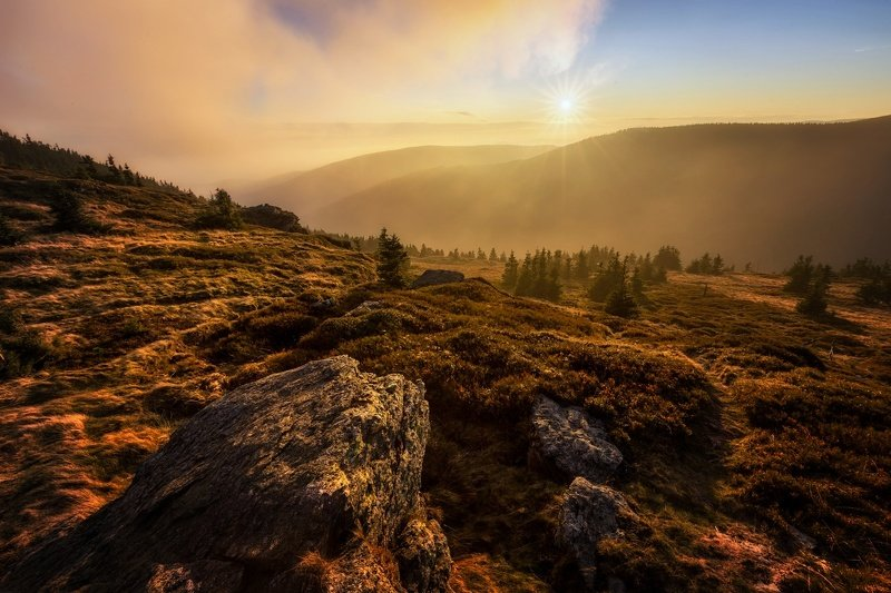 landscape, tree, sunset, panorama, rocks Autumn Evening in Red Mountainphoto preview
