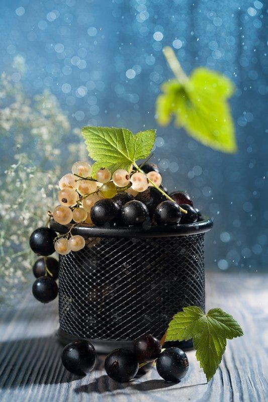 смородина, ягоды, боке Смородинаphoto preview