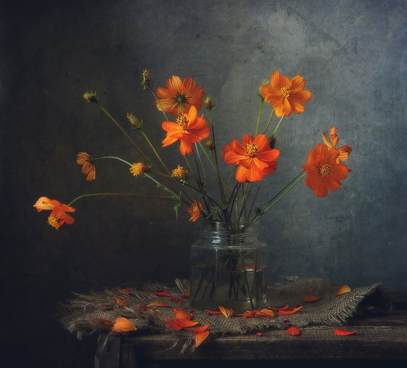 натюрморт,still life,цветы,космея космея...photo preview
