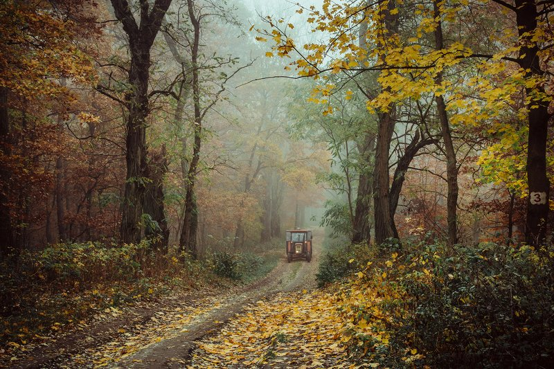 autumn forest fall road осенний трактор wood foggy mist magic jesien dranikowski path machine осенний тракторphoto preview