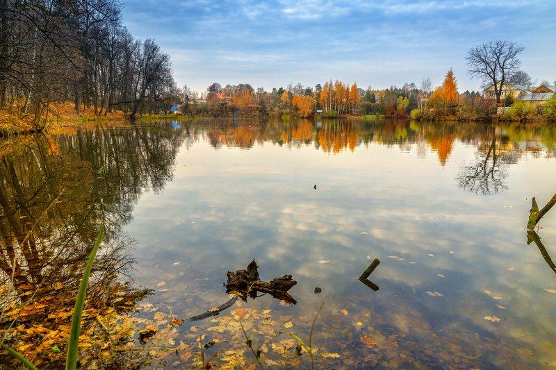 пейзаж, осень, озеро, пруд, желтый, листья, переделкино, landscape, autumn, lake, pond, yellow, leaves, peredelkino Осенняя пора в Переделкиноphoto preview