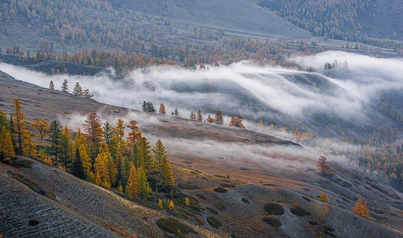 алтай. осень. горы. Алтайская осень.photo preview