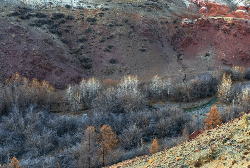 алтай,горный алтай, осень, кош-агач,вечер, закат, кызыл-чин Просто великолепный Алтайphoto preview