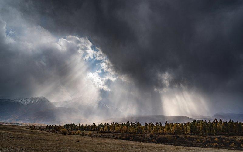 горы, алтай, горный алтай, пейзаж, природа, россия, ник васильев, красота, солнце, лучи, ненастье, курай, курайская степь Солнечный дождьphoto preview