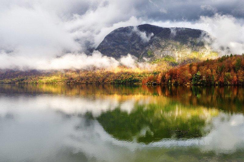 словения, озеро, туман, отражение, бохинь Бохиньская гитараphoto preview