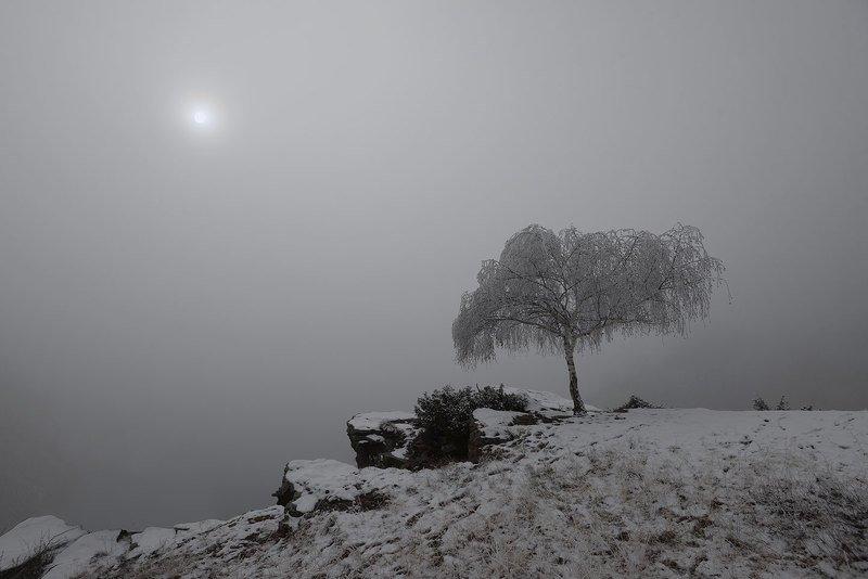 гижгит, туман, кабардино-балкария Березкаphoto preview